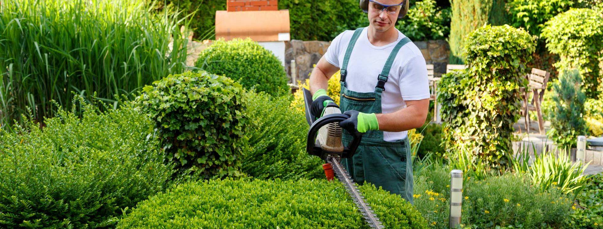 Wir sind seit 1979 im Garten-  und Landschaftsbau tätig...